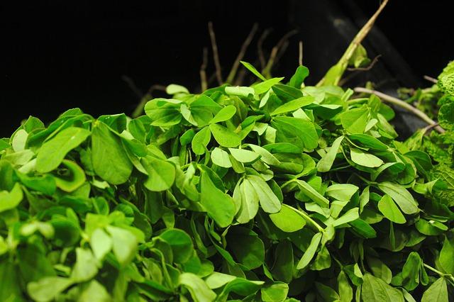 Les meilleures plantes pour vous aider à prendre du poids sans risque
